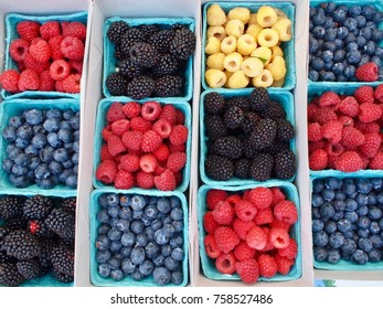 Colorful and healthy berries at farmers market