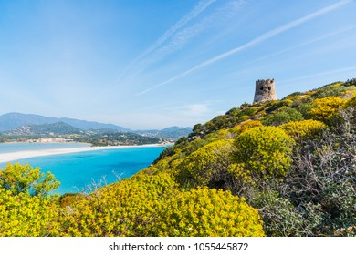 Colorful hill with Porto Giunco beach on the background, Villasimius. Sardinia, Italy