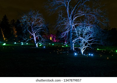 colorful holiday lights and ornaments illuminate park trees and field in evening