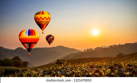 Colorful hot air balloon fly over Landscape of tea farm with sun rise in the morning at Chiangrai, Thailand with warm tone