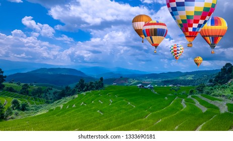 Colorful hot air balloon fly over beautiful landscape of green paddy field / rice field fram over blue sky and white cloud in Chiangmai, Thailand