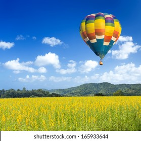 Colorful hot air balloon over yellow flower fields with blue sky background