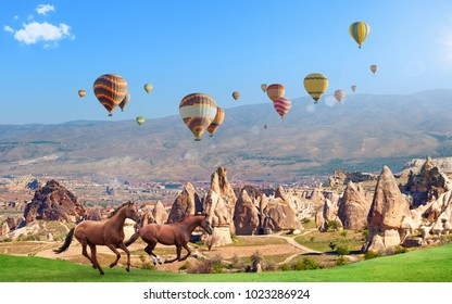 Colorful hot air balloons flying in clear morning sky above unusual rocky landscape in Cappadocia. Two horses run through green meadow near conical mountains in sunny day in Cappadocia, Turkey.