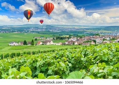 Colorful hot air balloons flying over champagne Vineyards at montagne de Reims, France