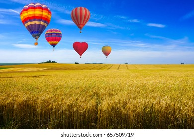 Colorful hot air balloons flying over reaped field and green hill view on a sunny day at sunset montagne de Reims, France