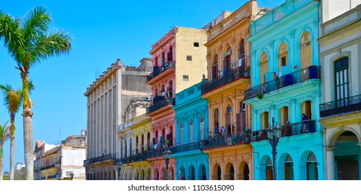 Colorful house facades in Havana in Cuba on a sunny day, colonial architecture, palm trees