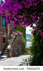 Colorful houses in Collioure. Beautifully decorated traditional houses on the French Mediterranean coast