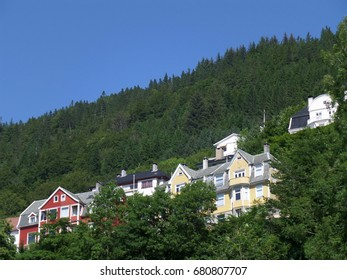 Colorful houses on the hillside amongst deep green trees, Bergen, Hordaland, Norway