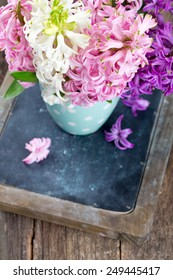 colorful hyacinth flowers in a polka dot cup