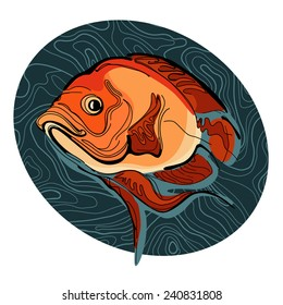 A colorful illustration of fish