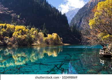 Colorful lake in autumn