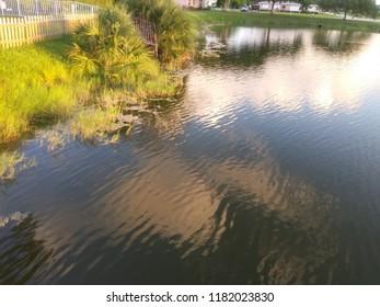 Colorful lakeside scenery