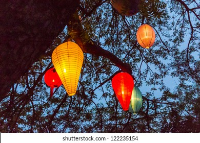 Colorful lampignons during night under blue sky