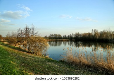 Colorful landscape with little lake, blue sky, clouds, green grass, reeeds on the bank, reflection of trees in water, electric lines