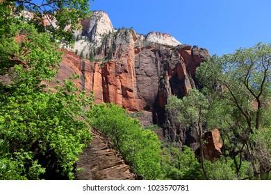 Colorful Landscape of Zion National Park