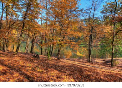 Colorful leaves on trees along lake in autumn, HDR image