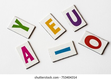 colorful letters vowels  on white background