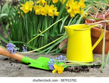 colorful little gardening tools with springtime flowers on wooden plank