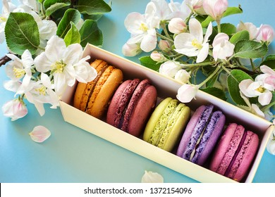 Colorful macaroons or macaron in a gift box decorated with apple blossom flowers on light blue background close up. Traditional french dessert macaroons in a rows top view