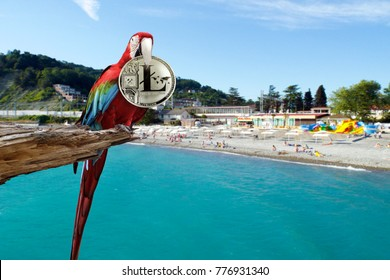 Colorful macaw sitting on broken tree with a Silver litecoin coin in its beak on the background of mountains and ocean. Vacation for litecoin. Freelance for litecoin.