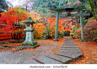 Colorful maple trees & fallen leaves at the entrance to Benzaiten Shrine in Bishamon-do Buddhist Temple in Yamashina, Kyoto Japan, with a traditional stone lantern by the paved path under a Torii gate