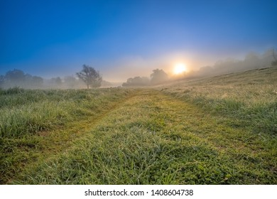 A colorful misty landscape with a view of dew-covered grass and the sun rising over the forest, slowly rising from behind the forest. The fog is like a haze, enveloping everything around.