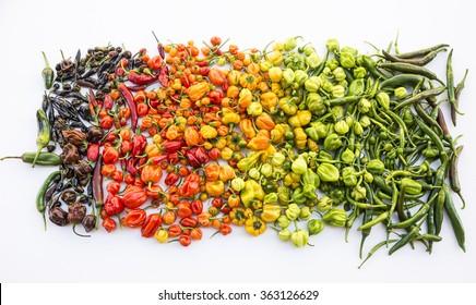 a colorful mix of the hottest chili peppers isolated on white. Thai chili, habanero, serrano, jalapeno, bhut jolokia, trinidad scorpion, carolina reaper, jamaican yellow, black chili