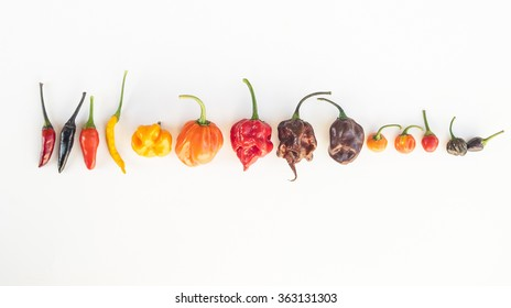 a colorful mix of the hottest chili peppers. isolated on white. Thai chili, habanero, serrano, jalapeno, bhut jolokia, trinidad scorpion, carolina reaper, jamaican yellow, black chili