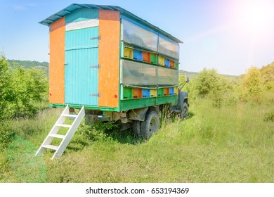 Colorful mobile beehive, apiary bee Apiculture beekeeping