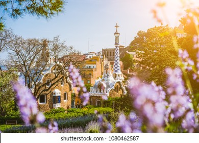 Colorful mosaic building in Park Guell. Violet flower in foreground. Evening warm Sun light flares, Barcelona, Spain