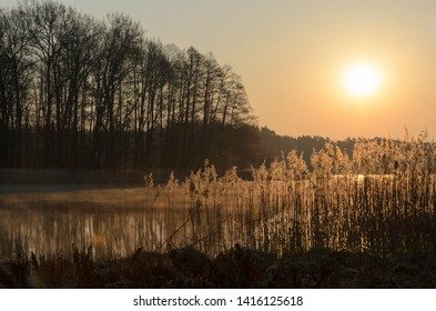 colorful nature landscape, wonderful summer sunrise on the lake, mirroring sunlight of rising morning sun in water on background trees on the coast and gold dawn sky, Ukraine, Europe