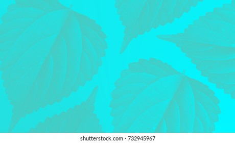 colorful neon leaf pattern background wallpaper