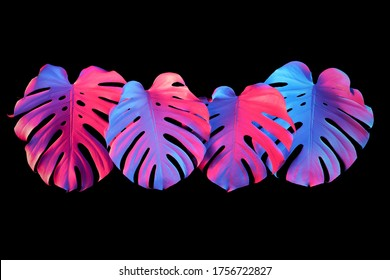 colorful-neon-pink-purple-blue-260nw-175