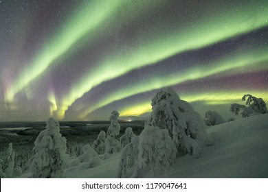 Colorful Northern lights (Aurora borealis) above snowy wildernes
