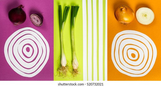 Colorful onion variations graphic