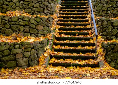 Colorful orange & yellow fallen leaves blanket a stone stairway through stone retaining walls