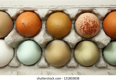 Colorful organic chicken eggs in a egg carton. These eggs were produced in small batches by a variety of chicken species so they appeared in different colors, patterns, and sizes.