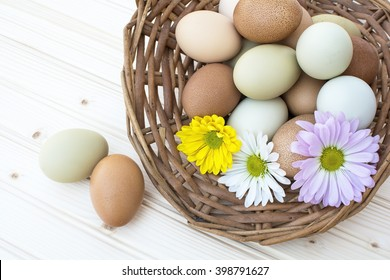 Colorful organic easter chicken eggs in old basket with chrysanthemum flower on wooden background, Allnatural organic easter chicken eggs in old basket