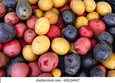 Colorful organic potatoes at a local farmers market.