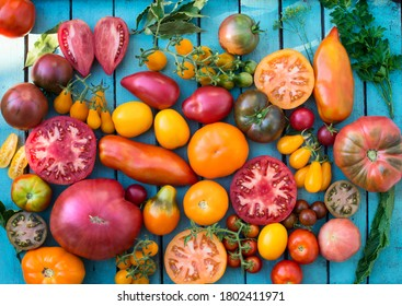 Colorful organic tomatoes. Mix tomatoes background. Several varieties of tomatoes on wooden background top view. Different kind assorted colorful tomatoes.