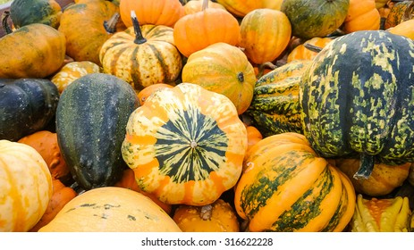 Colorful ornamental gourds as background, top view