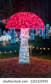 Colorful outdoor Christmas Holiday Light display with brightly lit mushrooms.