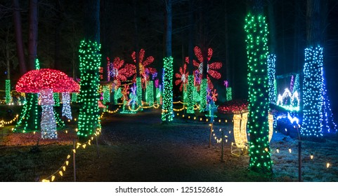 Colorful outdoor Christmas Holiday Light display with mushrooms and daisy flowers