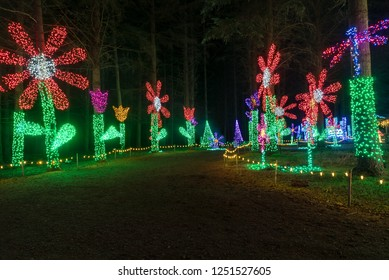 Colorful outdoor Christmas Holiday Light display with large red and green daisy flowers
