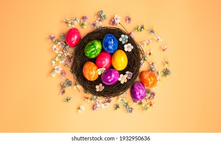 Colorful painted Easter Egg Nest with orange pastel colored background top view, Happy Easter Holliday concept background with Copy space spring bright colors design space for text