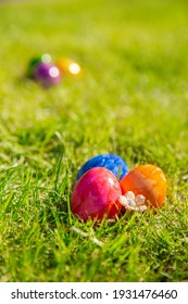 Colorful painted Easter eggs in the bright fresh green grass, concept for Easter Holliday, spring background with copy space space for text