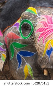 Colorful paintings on elephants