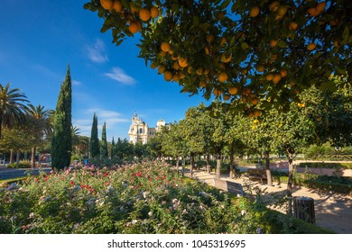 Colorful park in Malaga