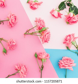Colorful pastel background with pink roses flowers. Flat lay. Top view