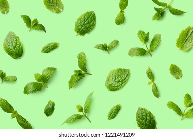 Colorful pattern of mint leaves on green background. Top view